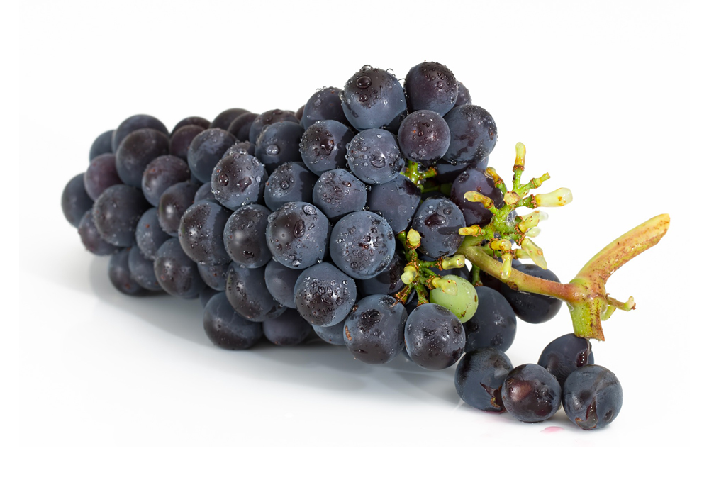 Protection for table grapes - Arrigoni
