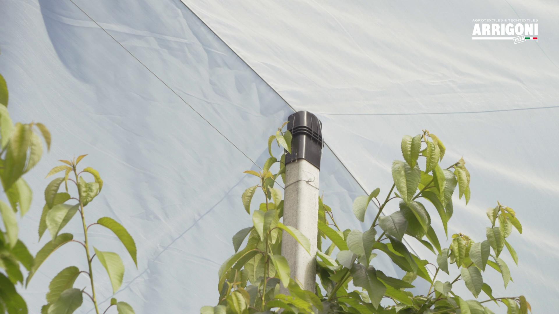 rain protection net